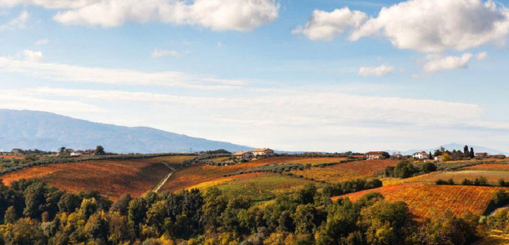 Montepulciano-d'Abruzzo-Colline-Teramane-DOCG